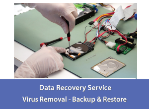 Computer Services - Data Recovery Services